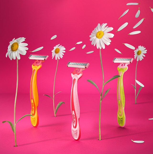 Flower field with shavers and daisies